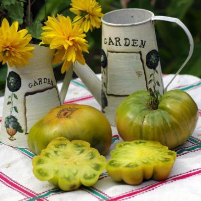 Aunt ruby's German green (2)