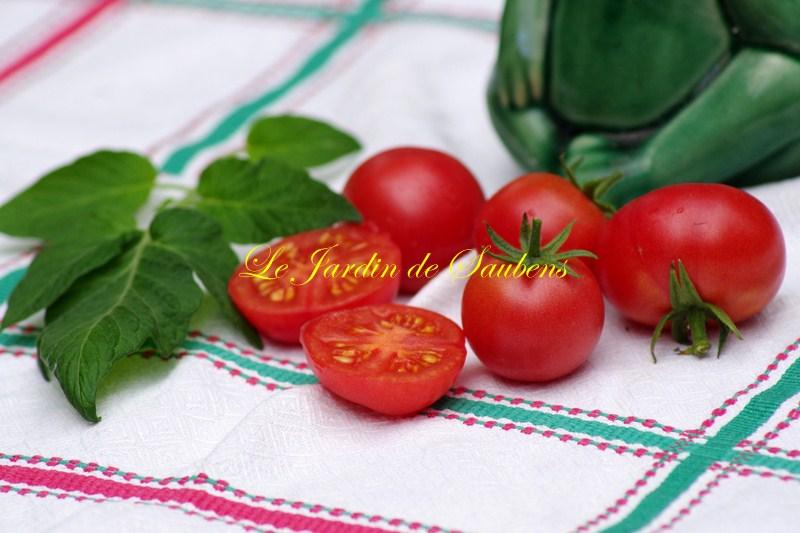 Brandywine cherry