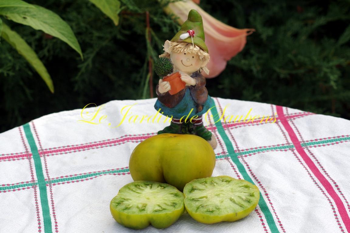 Dorothy's green