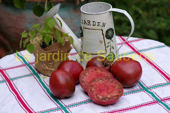 Purple Russian