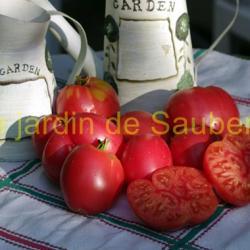 Red german strawberry