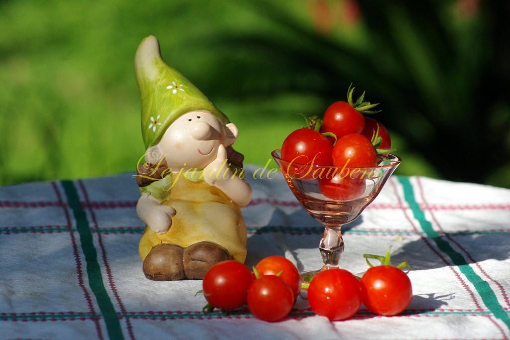 Gardener s delight 3