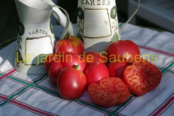 red-german-strawberry-copier.jpg