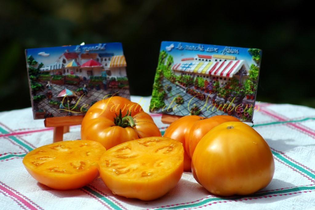Tangerine 6 001 copier